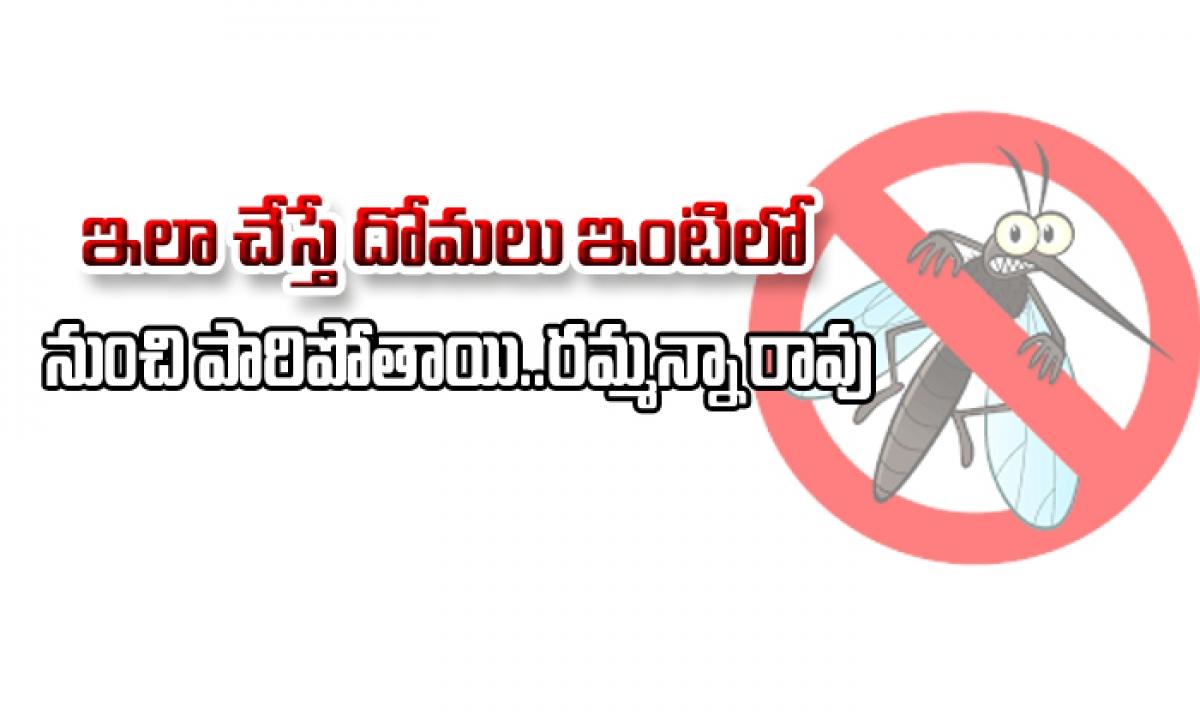 Simple Tips To Get Rid Of Mosquitoes-ఇలా చేస్తే దోమలు ఇంటిలో నుంచి పారిపోతాయి…రమ్మన్నా రావు-Telugu Health-Telugu Tollywood Photo Image-TeluguStop.com