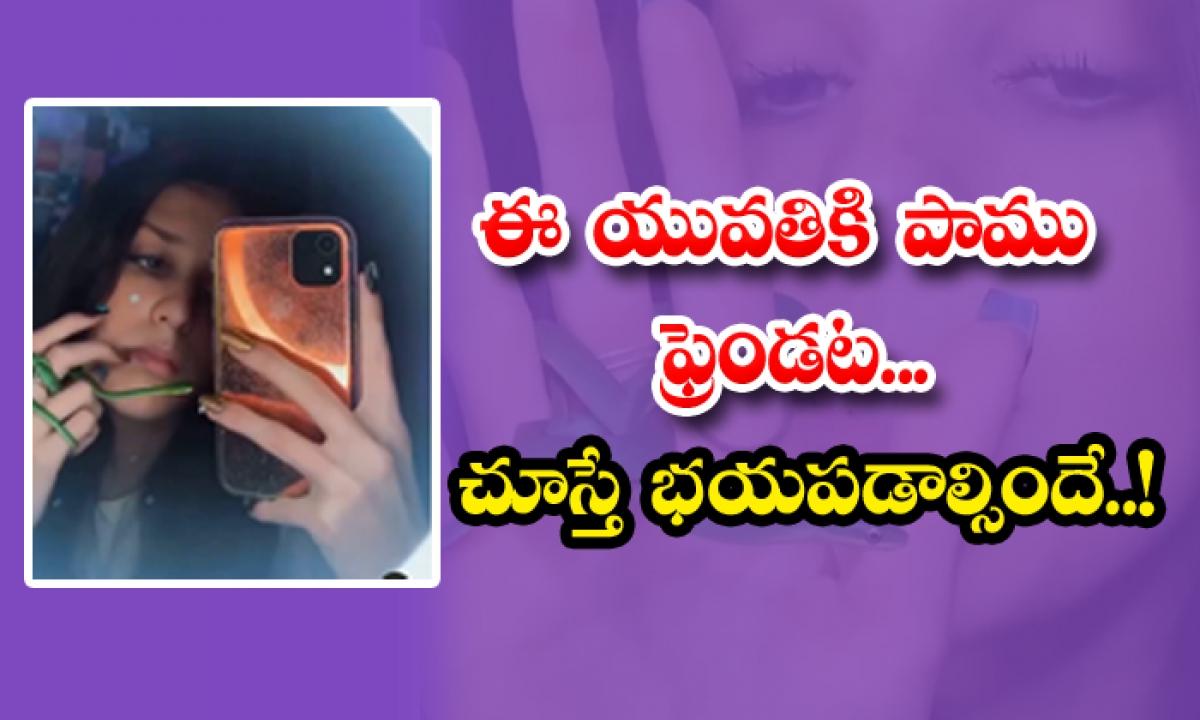 Snake Friend To This Young Woman If You Look You Should Be Scared-ఈ యువతికి పాము ఫ్రెండట.. చూస్తే భయపడాల్సిందే..-General-Telugu-Telugu Tollywood Photo Image-TeluguStop.com
