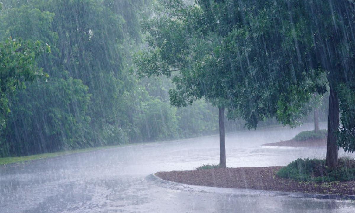 Southwest Monsoon Further Advances Into Telugu States, Says Imd-TeluguStop.com