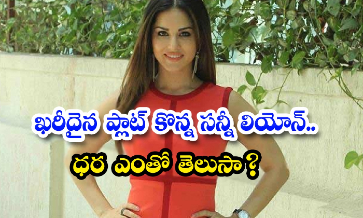 Sunnyleone Who Bought An Expensive Plot Do You Know The-TeluguStop.com