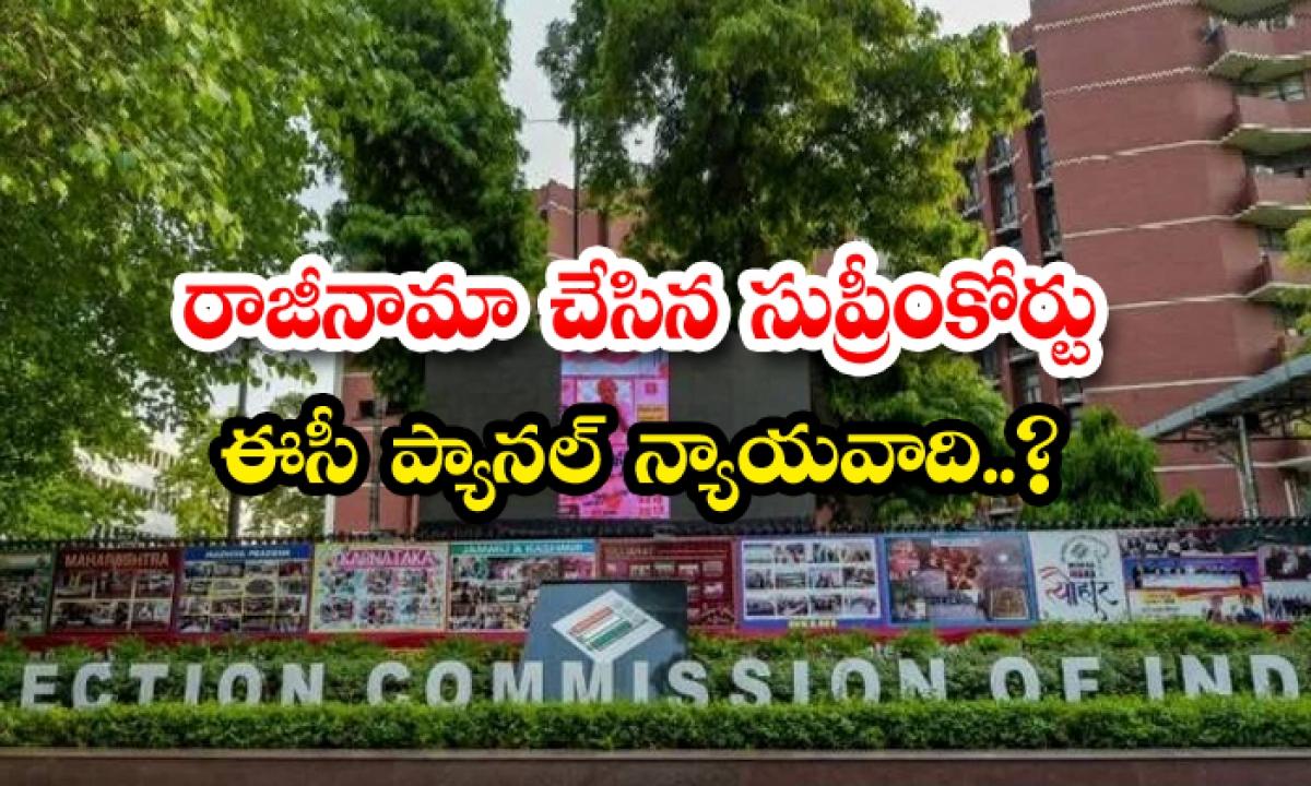Resigned Supreme Court Ec Panel Advocate-రాజీనామా చేసిన సుప్రీంకోర్టు ఈసీ ప్యానల్ న్యాయవాది.. -Breaking/Featured News Slide-Telugu Tollywood Photo Image-TeluguStop.com