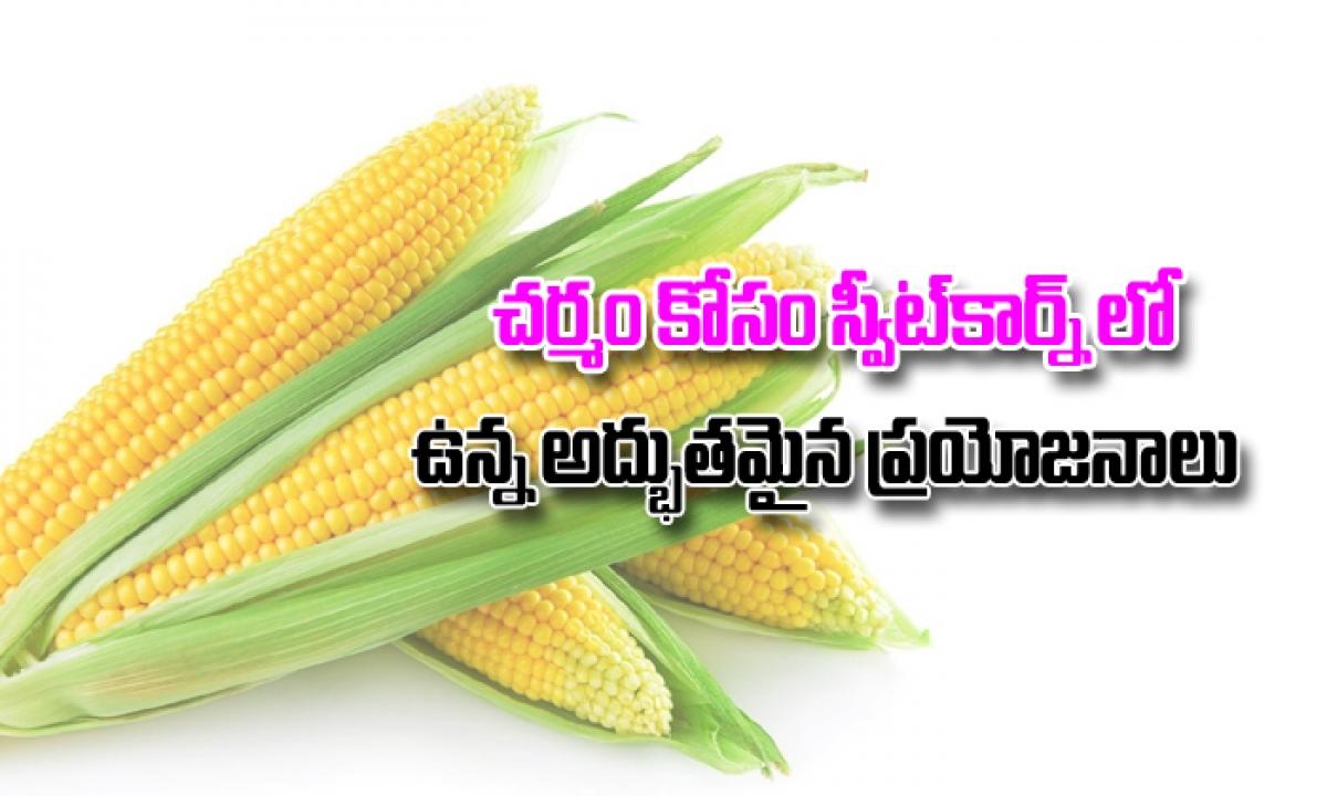 Amazing Benefits And Uses Of Sweet Corn For Skin-చర్మం కోసం స్వీట్ కార్న్ లో ఉన్న అద్భుతమైన ప్రయోజనాలు-Telugu Health - తెలుగు హెల్త్ టిప్స్ ,చిట్కాలు-Telugu Tollywood Photo Image-TeluguStop.com