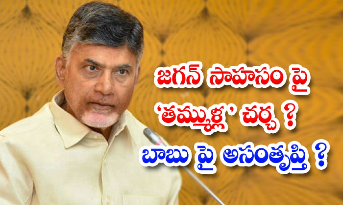 Tdp Leaders Dissatisfied With Jagan For Giving Nominated Posts To Ycp Leaders-జగన్ సాహసం పై తమ్ముళ్ల చర్చ బాబు పై అసంతృప్తి -Political-Telugu Tollywood Photo Image-TeluguStop.com