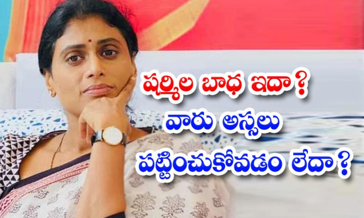 Sharmila Troubled On Telangana Politics-షర్మిల బాధ ఇదా వారు అస్సలు పట్టించుకోవడం లేదా -Political-Telugu Tollywood Photo Image-TeluguStop.com
