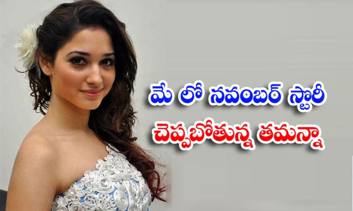 Tamannah To Tell November Story On May 14-TeluguStop.com