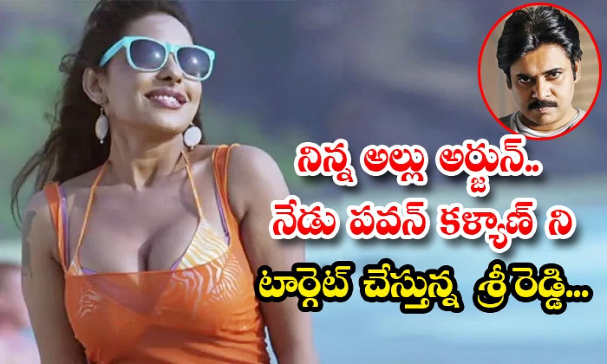 Telugu Actress Sri Reddy Negative Trolls On Allu Arjun And Pawan Kalyan-TeluguStop.com