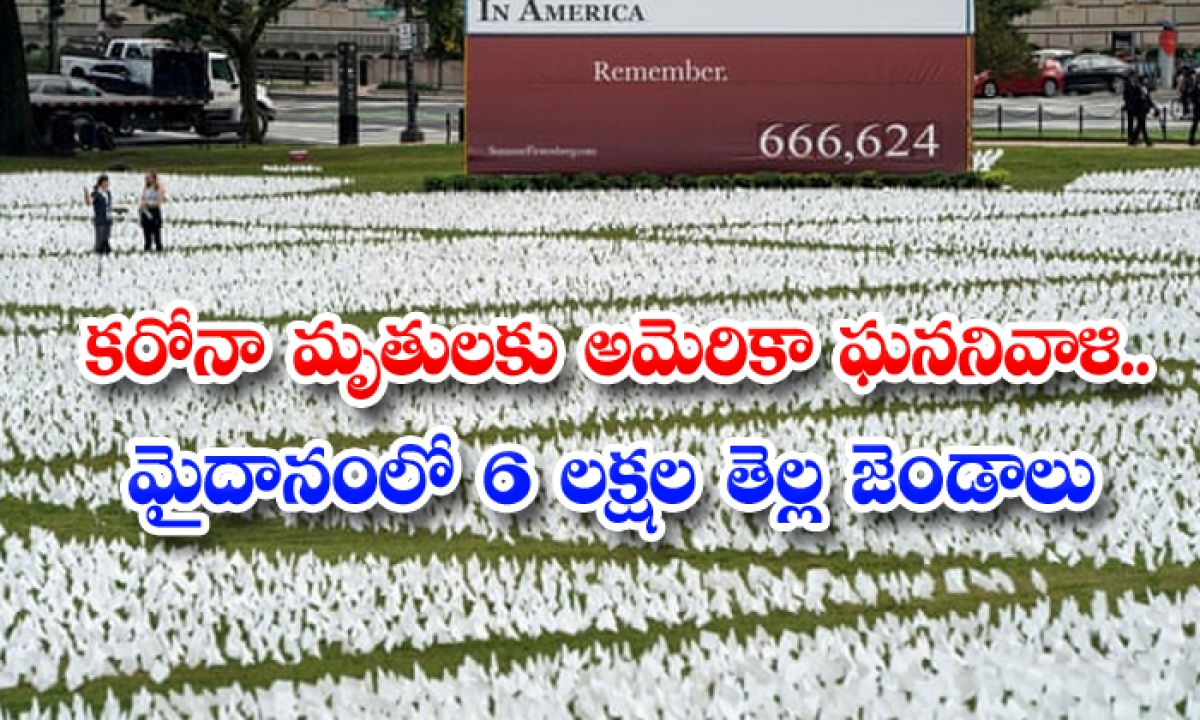 The Immensity Of Our Loss 650000 White Flags Show American Lives Lost To Covid-కరోనా మృతులకు అమెరికా ఘన నివాళి.. మైదానంలో 6 లక్షల తెల్లజెండాలు-Latest News - Telugu-Telugu Tollywood Photo Image-TeluguStop.com