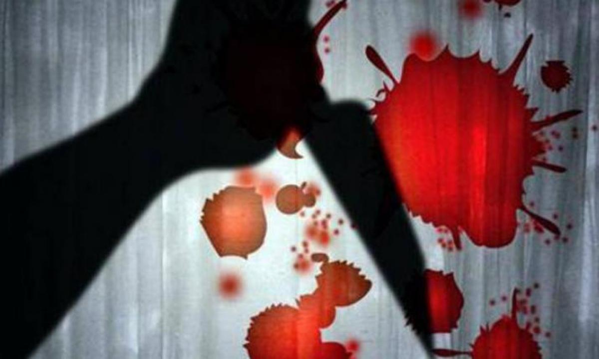 The Thugs Who Killed The Sleeping Couple-TeluguStop.com