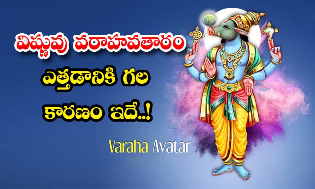Unknown Facts About Varahavataram-విష్ణువు వరాహవతారం ఎత్తడానికి గల కారణం ఇదే..-Latest News - Telugu-Telugu Tollywood Photo Image-TeluguStop.com