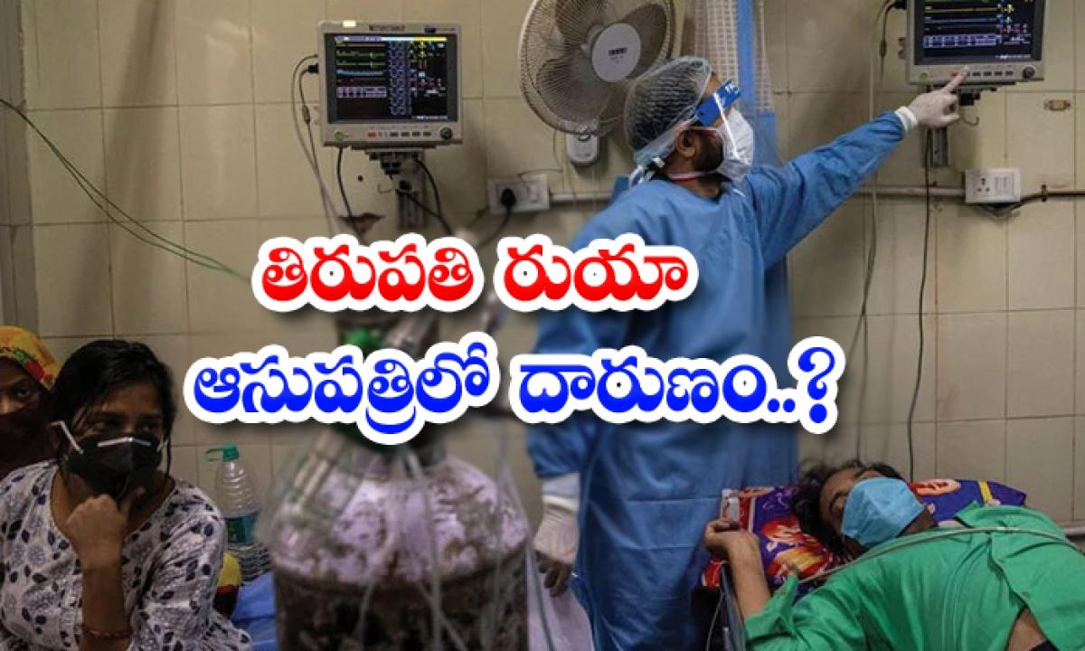 Tension At Tirupati Rua-తిరుపతి రుయా ఆసుపత్రిలో దారుణం.. -Breaking/Featured News Slide-Telugu Tollywood Photo Image-TeluguStop.com
