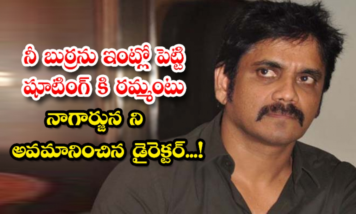 Tollywood Director Insulted Hero Nagarjuna-TeluguStop.com