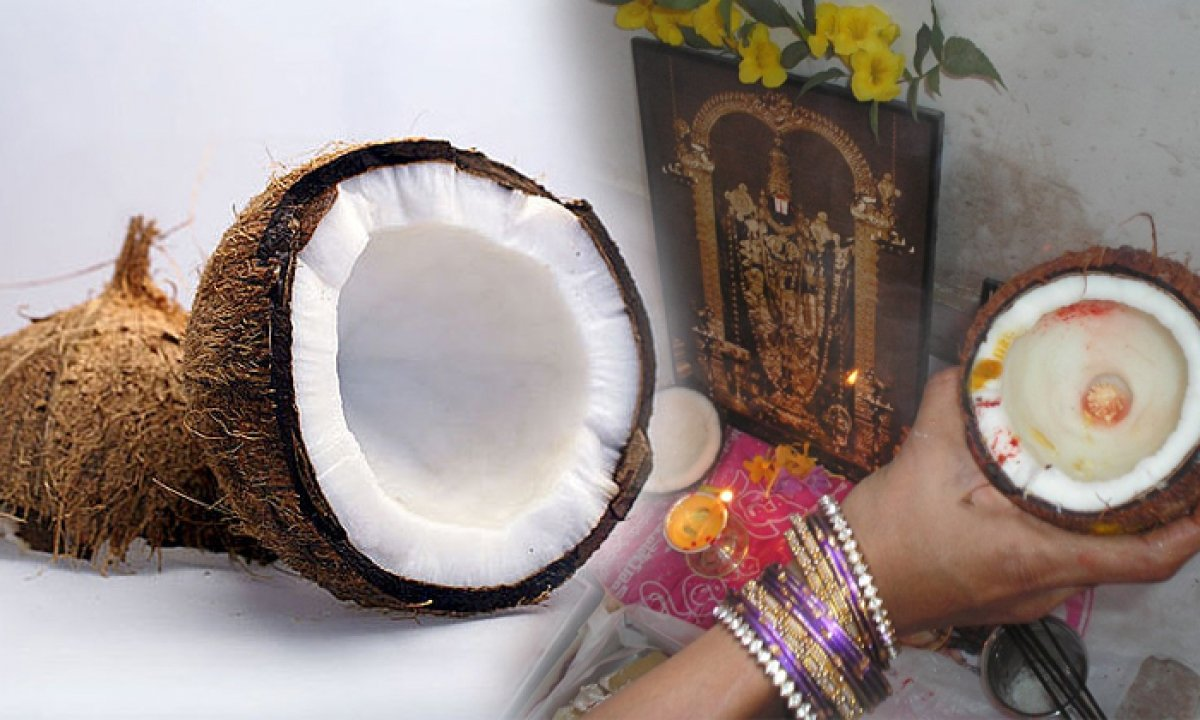 Unknown Facts About Indian Coconut-TeluguStop.com