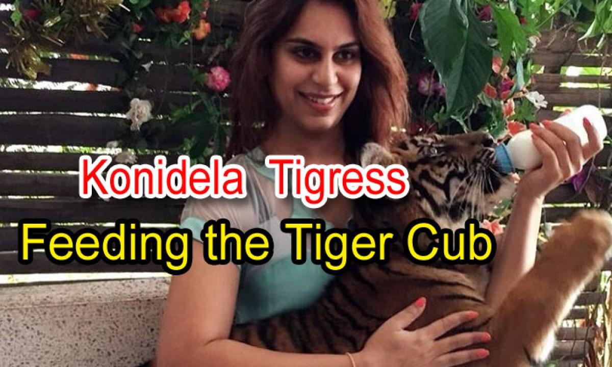 Konidela Tigress Feeding The Tiger Cub-TeluguStop.com