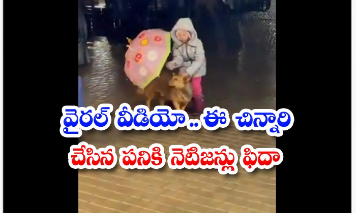 Viral Video Netizens Are Fed Up With The Work Done By This Child-వైరల్ వీడియో… ఈ చిన్నారి చేసిన పనికి నెటిజన్లు ఫిదా-General-Telugu-Telugu Tollywood Photo Image-TeluguStop.com