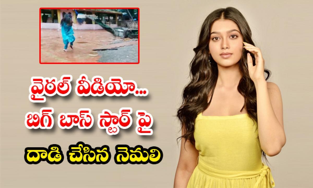 Viral Video Peacock Attacking Bigg Boss Star Divangana Suryavanshi-TeluguStop.com