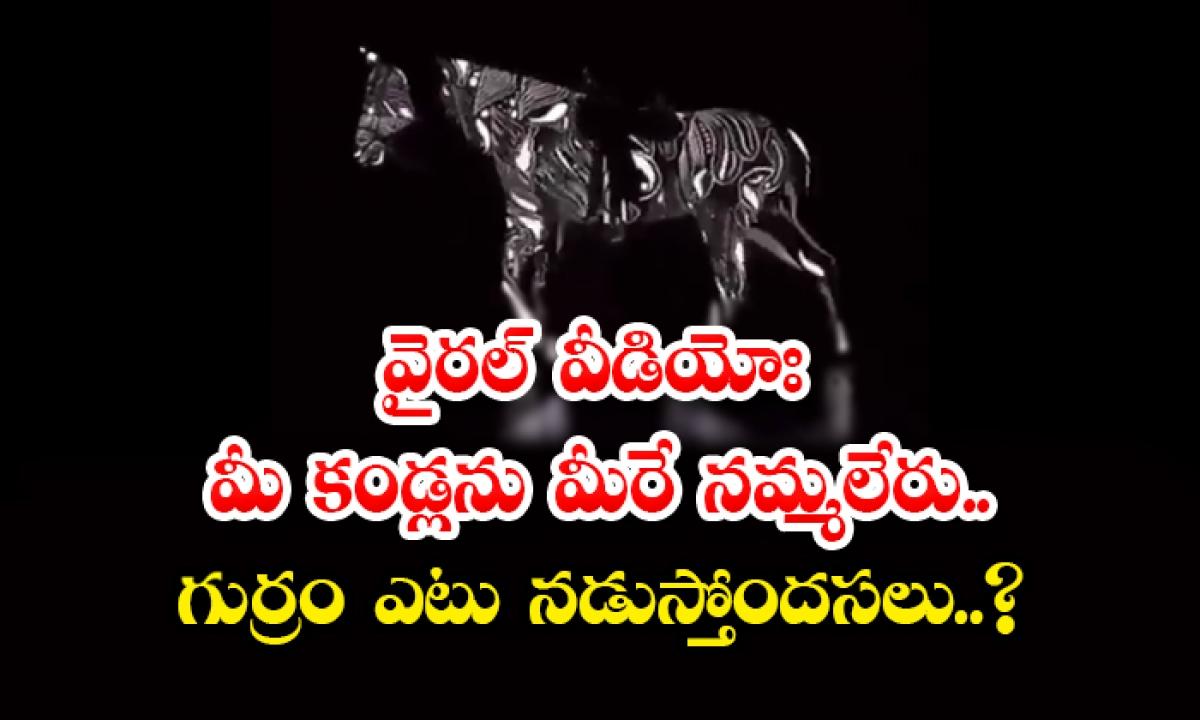 Viral Video You Can Not Believe Your Eyes What Is The Horse Running-వైరల్ వీడియోః మీ కండ్లను మీరే నమ్మలేరు.. గుర్రం ఎటు నడుస్తోందసలు..-General-Telugu-Telugu Tollywood Photo Image-TeluguStop.com