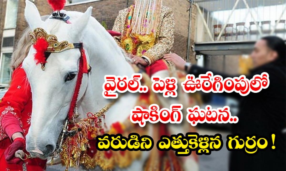 Wedding Horse Runs Away With Groom In Rajasthan-వైరల్.. పెళ్లి ఊరేగింపులో షాకింగ్ ఘటన..వరుడిని ఎత్తుకెళ్లిన గుర్రం -General-Telugu-Telugu Tollywood Photo Image-TeluguStop.com