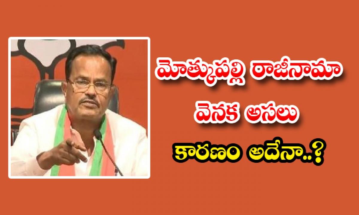 What Is The Real Reason Behind Motkupalli Resignation To Bjp-మోత్కుపల్లి రాజీనామా వెనక అసలు కారణం అదేనా..-Latest News - Telugu-Telugu Tollywood Photo Image-TeluguStop.com