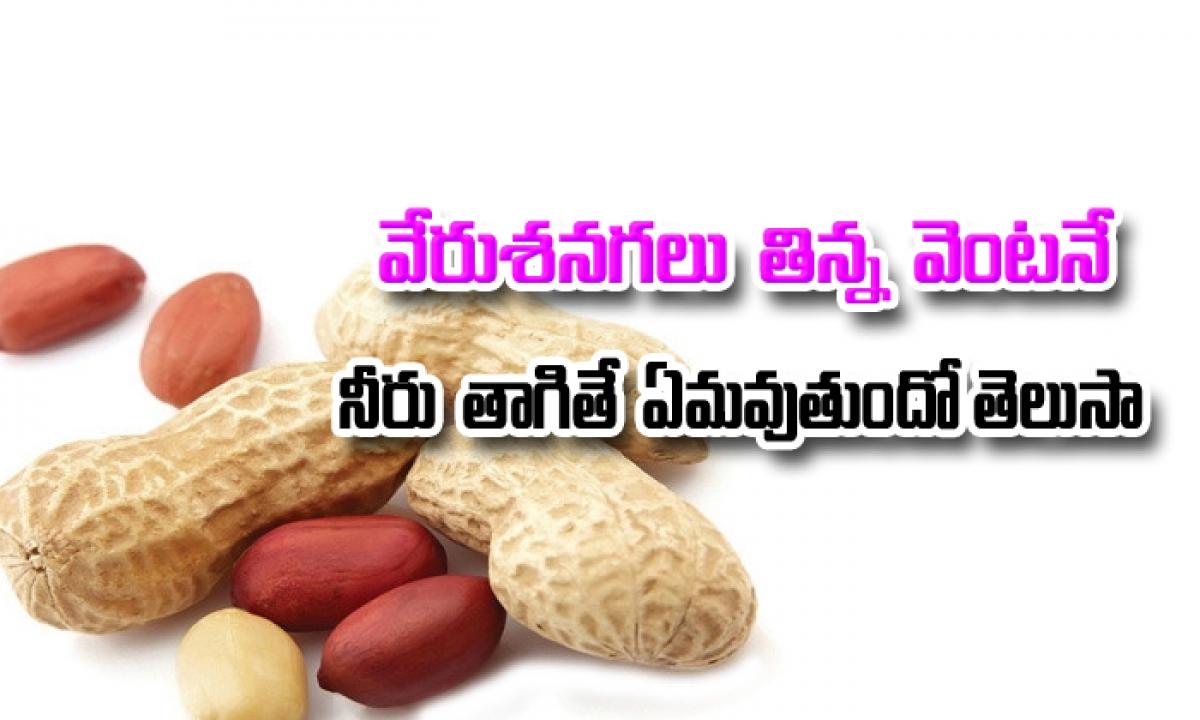 Why You Should Not Drink Water After Eating Peanuts-వేరుశనగలు తిన్న వెంటనే నీరు తాగితే ఏమవుతుందో తెలుసా… తప్పకుండా తెలుసుకోవాల్సిన విషయం-Telugu Health-Telugu Tollywood Photo Image-TeluguStop.com