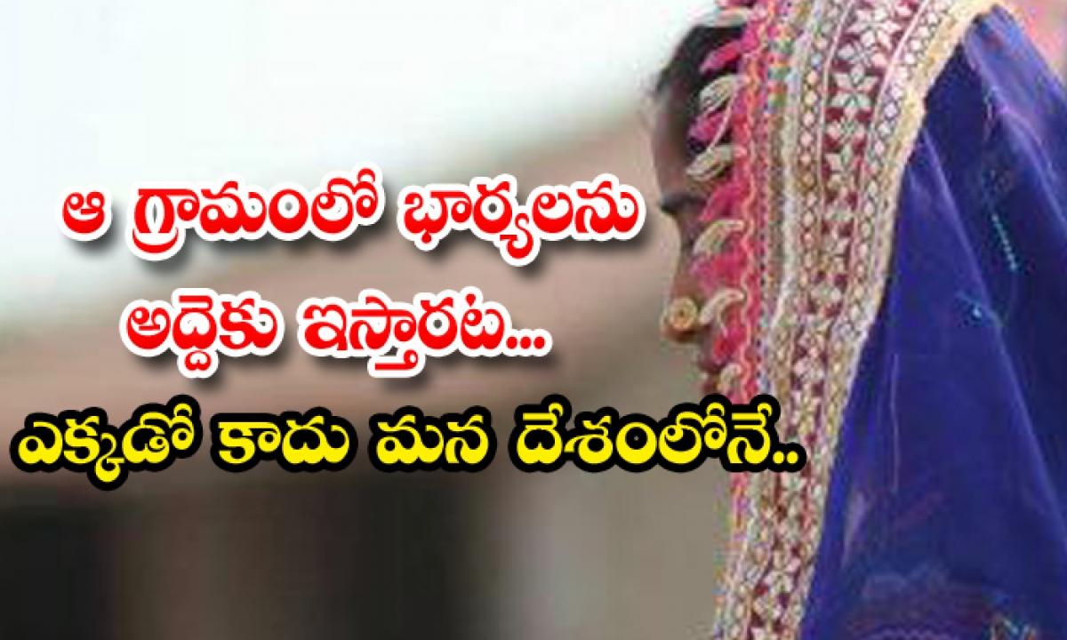 Rent Wife In Madhya Pradesh News-TeluguStop.com