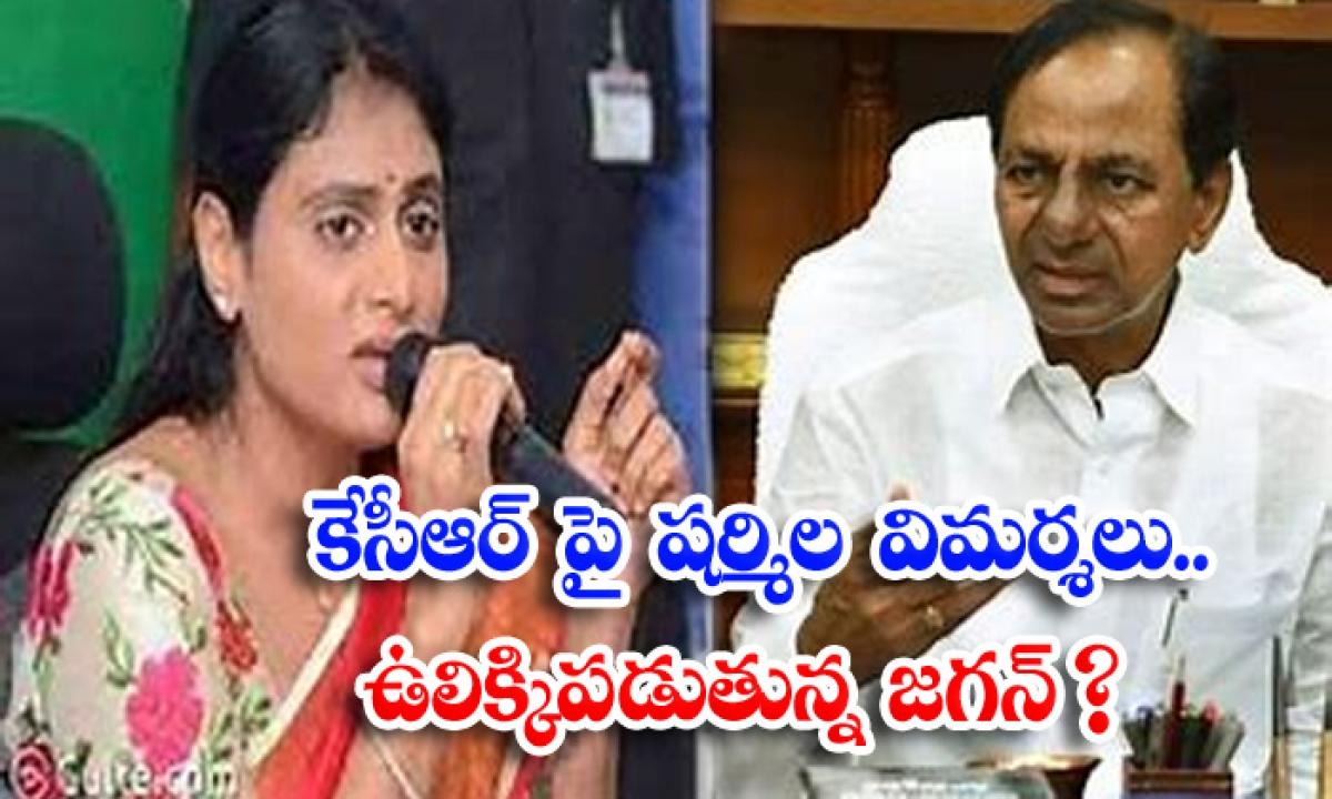 Jagan Troubled On Ys Sharmila Comments-కేసిఆర్ పై షర్మిల విమర్శలు.. ఉలిక్కిపడుతున్న జగన్ -Political-Telugu Tollywood Photo Image-TeluguStop.com