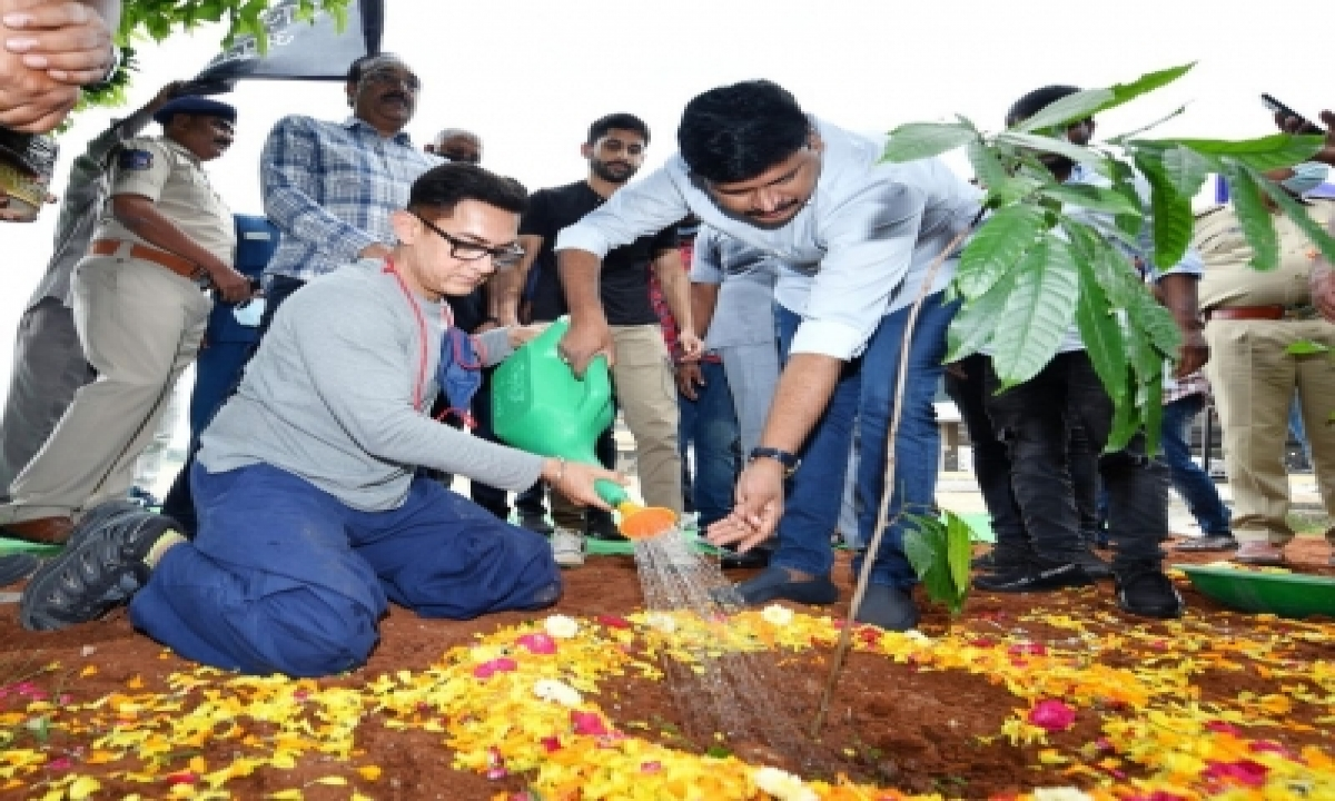 Aamir Khan Takes Part In Green India Challenge'-Bollywood News-Telugu Tollywood Photo Image-TeluguStop.com