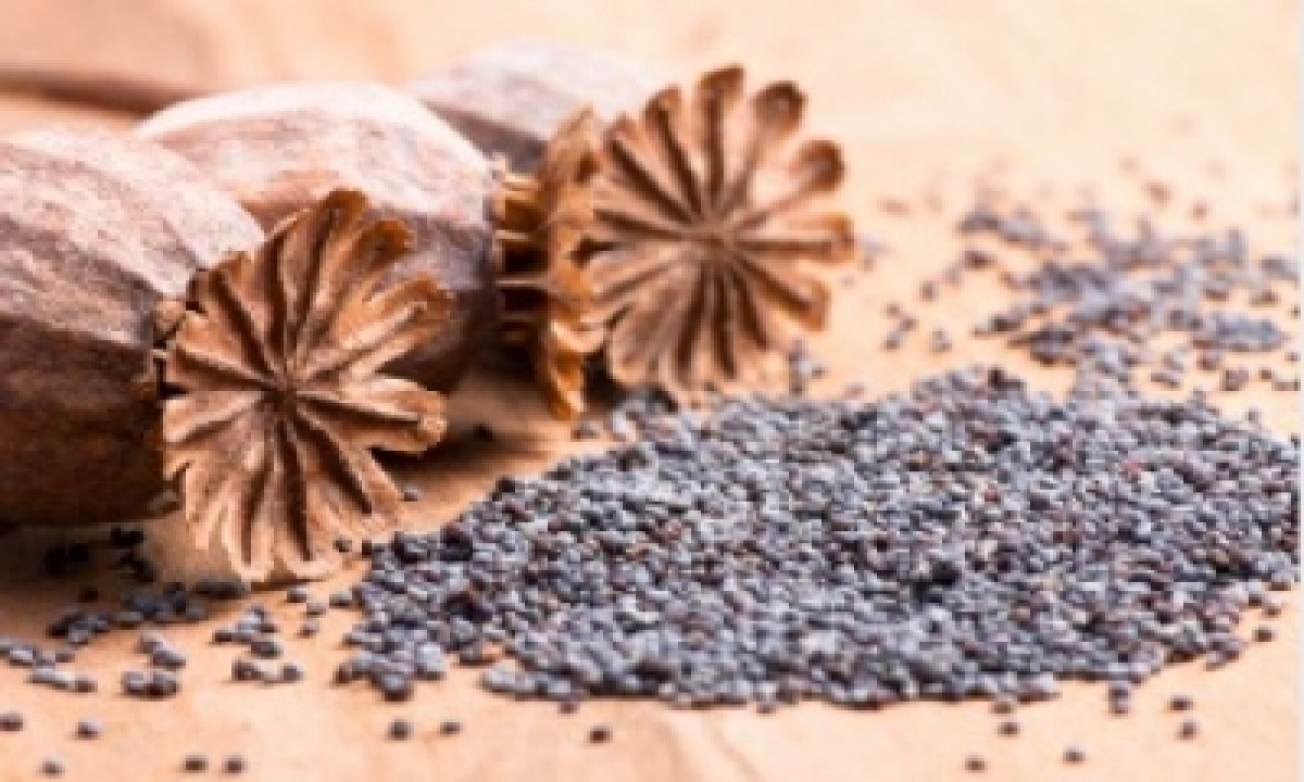 After A Variety Of Drugs, Poppy Seeds Is Newest Item Being Smuggled From Myanmar – National,crime/disaster/accident,insight-TeluguStop.com
