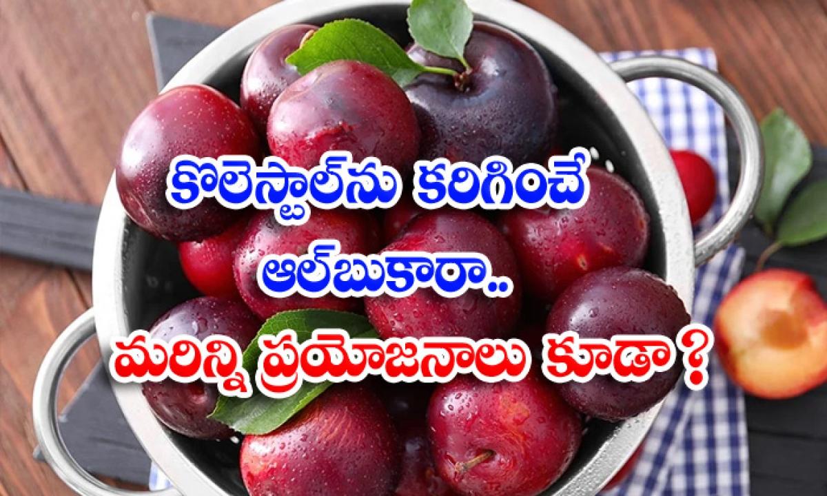 Albukhara Fruit Bad Cholesterol Latest News Benefits Of Albukhara Frui-కొలెస్ట్రాల్ను కరిగించే ఆల్బుకారా.. మరిన్ని ప్రయోజనాలు కూడా-Latest News - Telugu-Telugu Tollywood Photo Image-TeluguStop.com