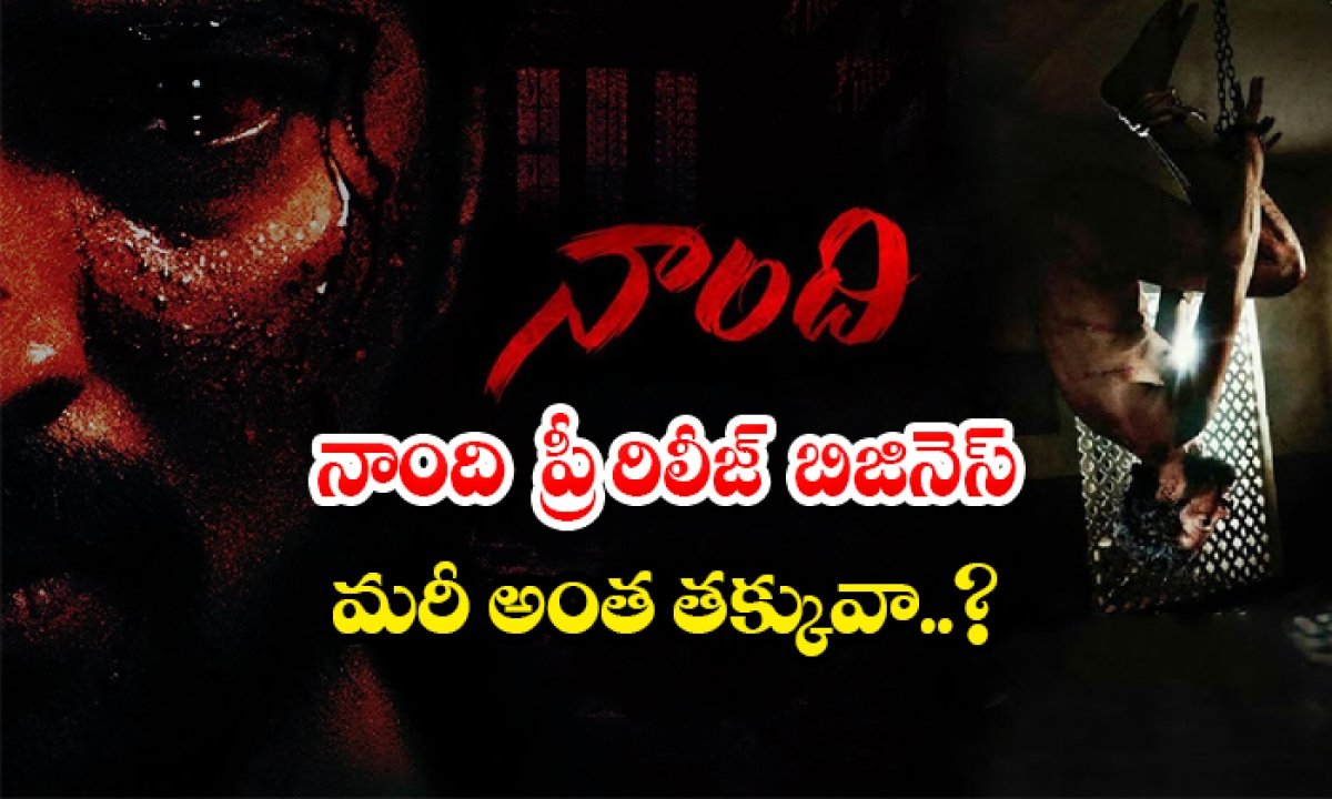 Allari Naresh Naandhi Movie Pre Release Business Details-TeluguStop.com