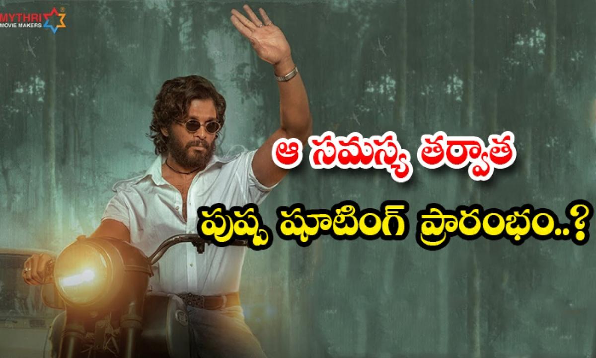 Icon Star Allu Arjun New Movie Pushpa Movie Shooting Start In Hyderabad After Sukumar Recovered From Fever-ఆ సమస్య తర్వాత పుష్ప షూటింగ్ ప్రారంభం..-Latest News - Telugu-Telugu Tollywood Photo Image-TeluguStop.com