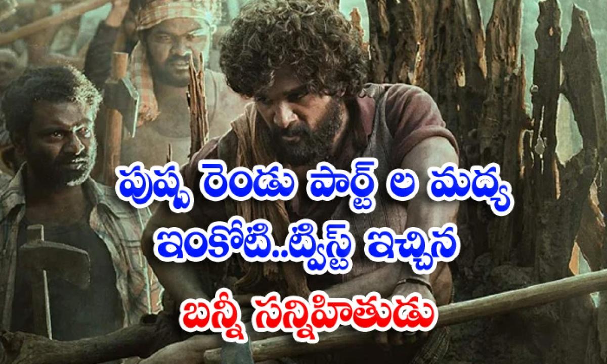 Allu Arjun Pushpa Movie Two Parts Interesting Update-TeluguStop.com