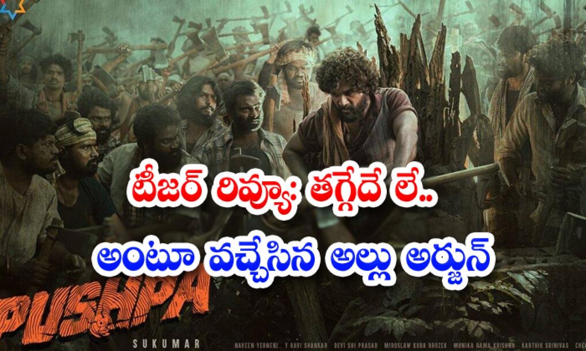 Allu Arjun Pushpa Movie Teaser Review-TeluguStop.com