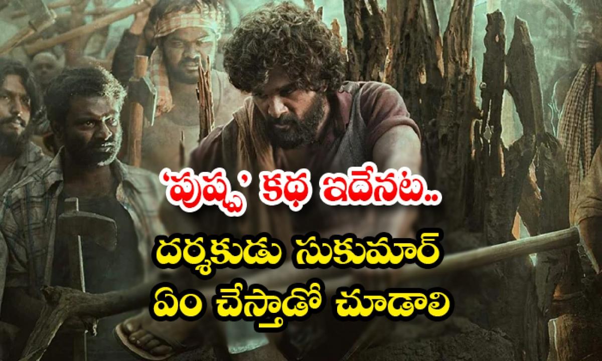 Allu Arjun Sukumar Movie Pushpa Story Leaked-పుష్ప' కథ ఇదేనట.. దర్శకుడు సుకుమార్ ఏం చేస్తాడో చూడాలి-Latest News - Telugu-Telugu Tollywood Photo Image-TeluguStop.com