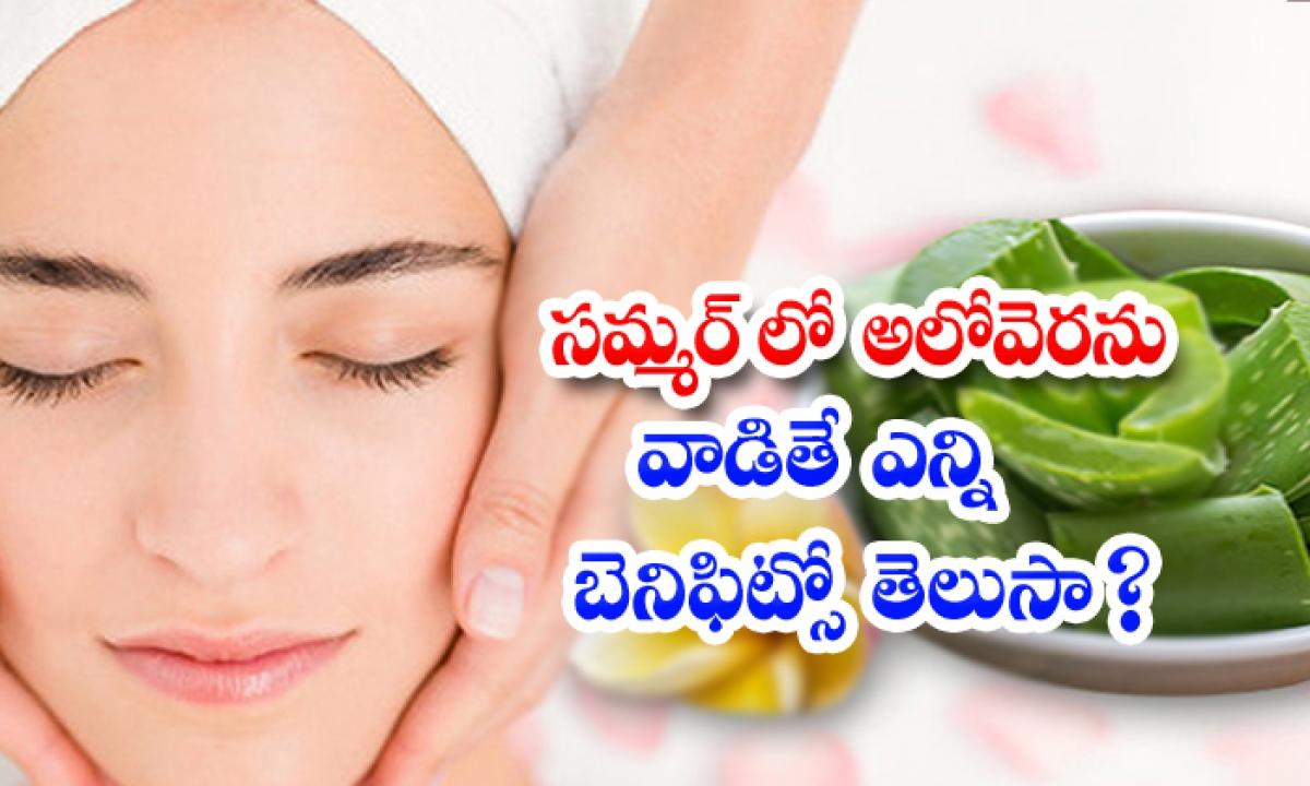 Aloe Vera Benefits For Face In Summer-TeluguStop.com