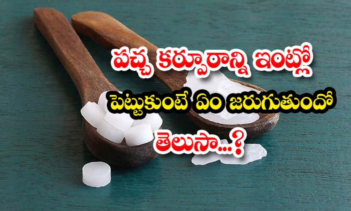 Pacha Karpuram Benefits Amazing Benefits And Uses Of Camphor-TeluguStop.com