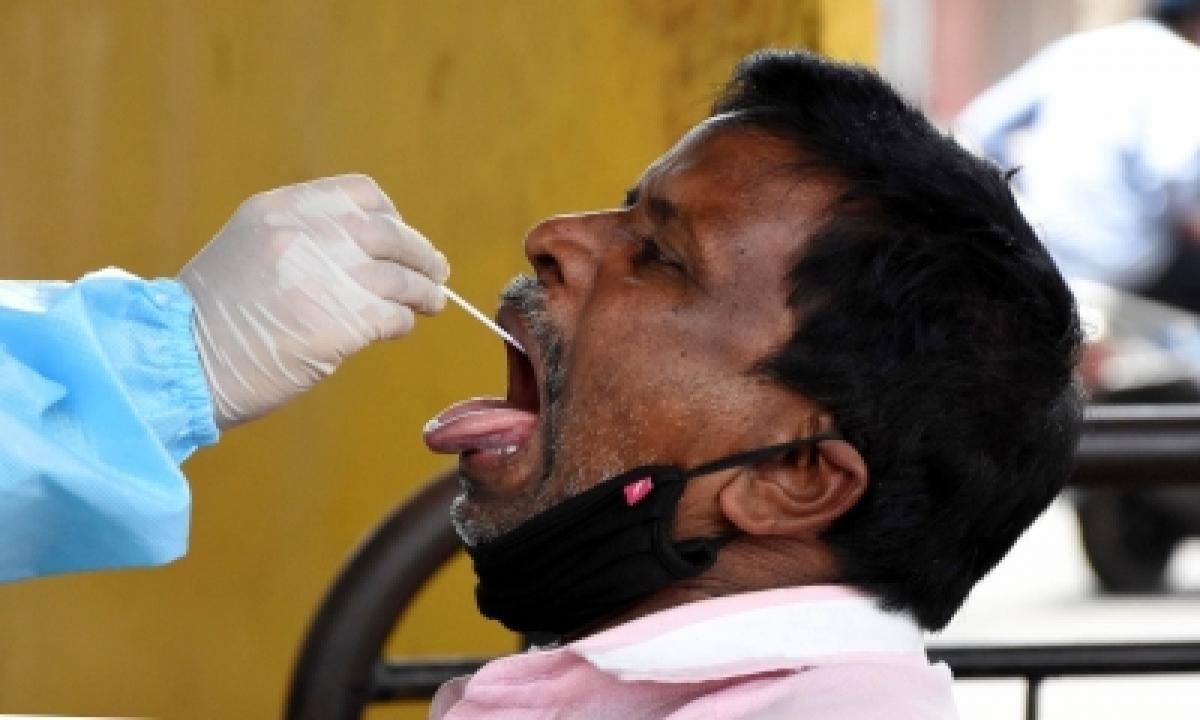 Andhra Pradesh Records 1,546 More Covid Cases, 15 Deaths-TeluguStop.com
