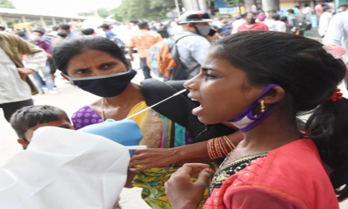Andhra Registers 1,843 More Covid Cases, 12 Deaths-TeluguStop.com