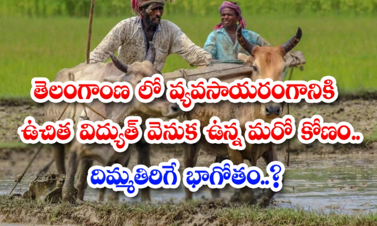 Another Aspect Behind Free Electricity For Agriculture In Telangana-TeluguStop.com