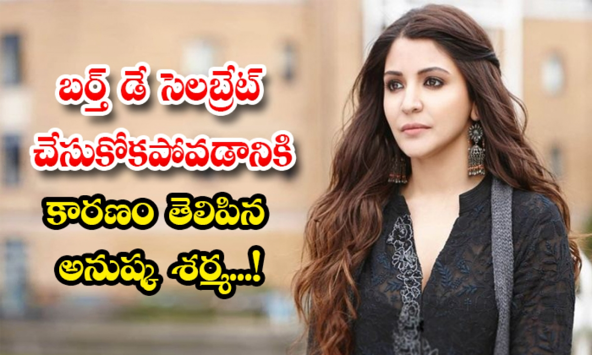 Anushka Sharma Shared Reason For Not Celebrating Her Birthday-TeluguStop.com