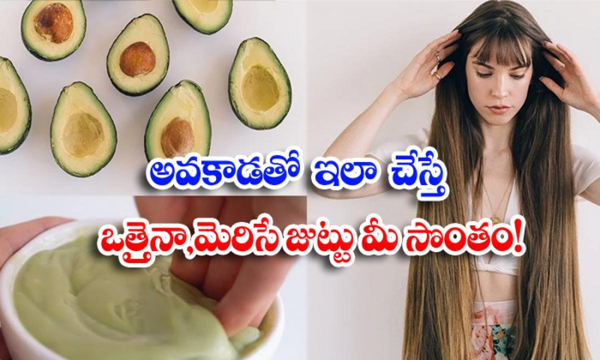 Avocado Hair Growth Hair Hair Care Latest News-అవకాడోతో ఇలా చేస్తే ఒత్తైనా, మెరిసే జుట్టు మీ సొంతం-Latest News - Telugu-Telugu Tollywood Photo Image-TeluguStop.com