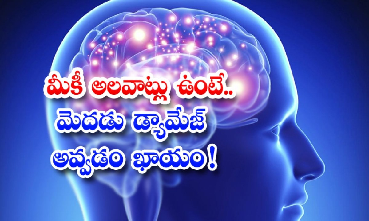 These Habits Can Damage The Brain-TeluguStop.com