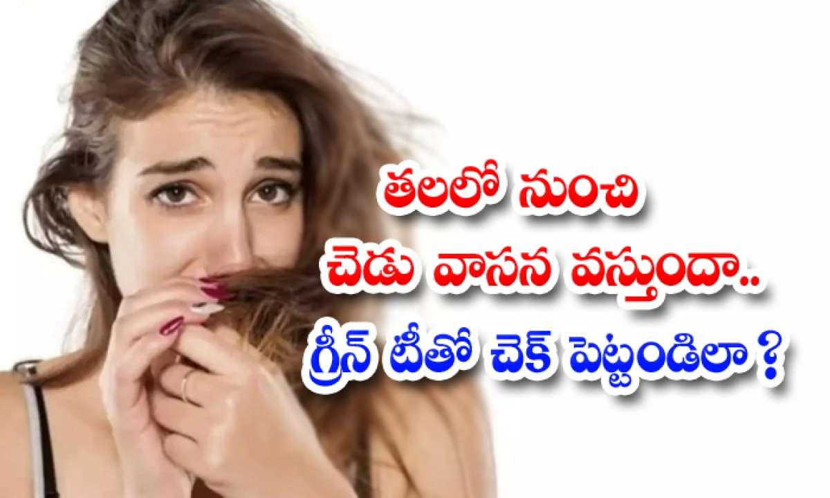 Does It Smell Bad From The Head Check It With Green Tea-TeluguStop.com