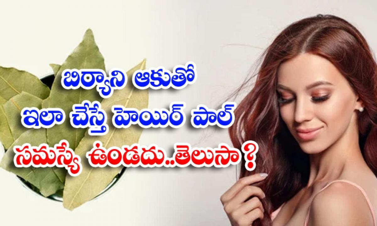 Bay Leaves Helps To Reduce Hair Fall Naturally-బిర్యానీ ఆకుతో ఇలా చేస్తే హెయిర్ ఫాల్ సమస్యే ఉండదు..తెలుసా-Latest News - Telugu-Telugu Tollywood Photo Image-TeluguStop.com