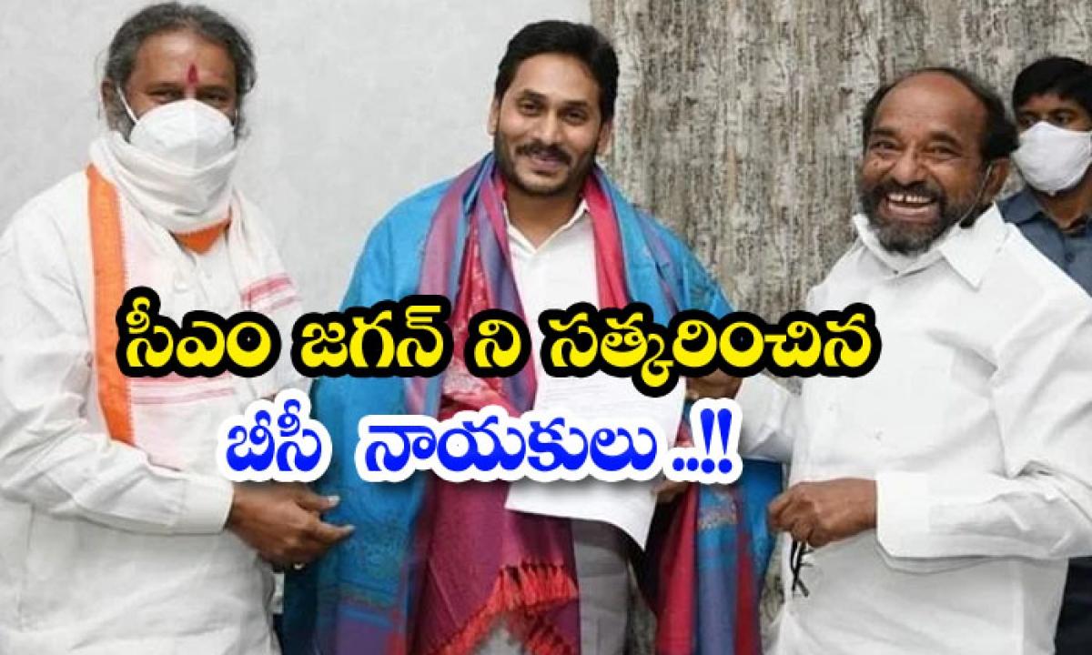 Bc Leaders Honor Cm Jagan-సీఎం జగన్ ని సత్కరించిన బీసీ నాయకులు..-General-Telugu-Telugu Tollywood Photo Image-TeluguStop.com