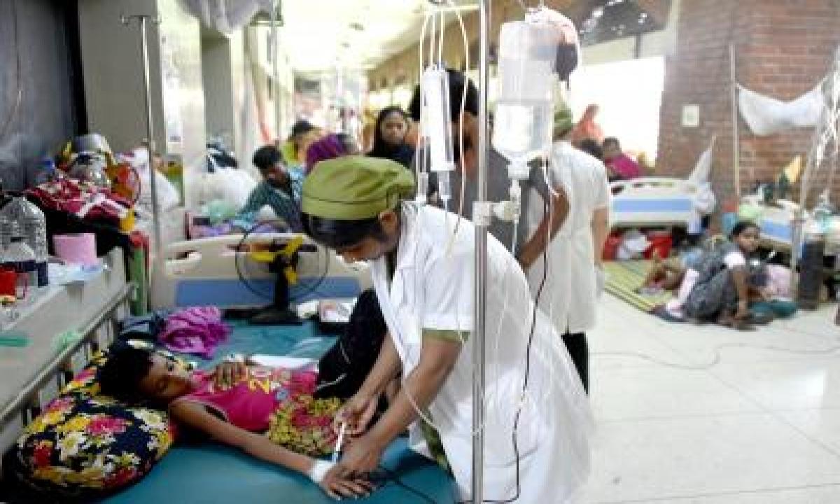 B'desh Urged To Build Stronger Health System For Tackling Climate-sensitive Diseases – International,health/medicine,south Asia,politics-TeluguStop.com