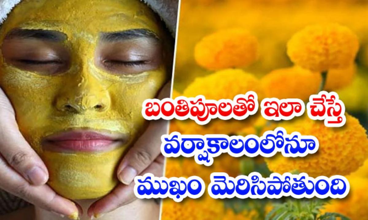Beauty Benefits Of Marigold In Rainy Season-బంతిపూలతో ఇలా చేస్తే..వర్షాకాలంలోనూ ముఖం మెరిసిపోతుంది-Latest News - Telugu-Telugu Tollywood Photo Image-TeluguStop.com