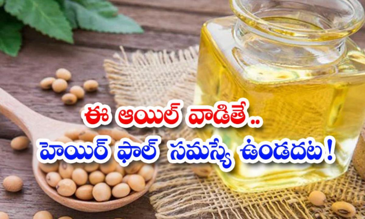 Benefits Of Soybean Oil For Hair-ఈ ఆయిల్ వాడితే.. హెయిర్ ఫాల్ సమస్యే ఉండదట-Latest News - Telugu-Telugu Tollywood Photo Image-TeluguStop.com