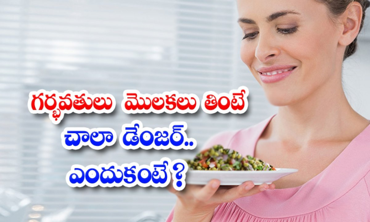 Is Very Dangerous For Pregnant Women To Eat Sprouts Because-TeluguStop.com