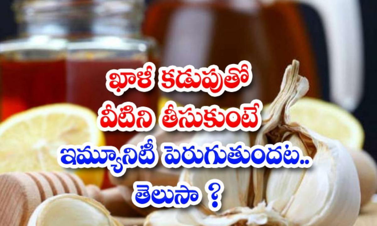 Aking These Foods On An Empty Stomach Will Increase Immunity-ఖాళీ కడుపుతో వీటిని తీసుకుంటే ఇమ్యూనిటీ పెరుగుతుందట..తెలుసా-Latest News - Telugu-Telugu Tollywood Photo Image-TeluguStop.com
