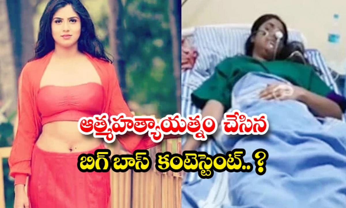 Bigg Boss Contestant Chaitra Kotturu Commits Suicide Attempt-TeluguStop.com